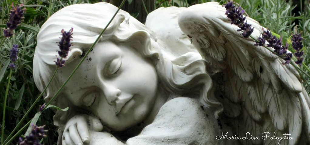 Angels Are Calling. Reports of people seeing Angels come from all over the world.....