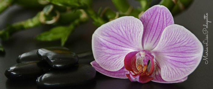 The benefits of massage through acupressure and essential oils.